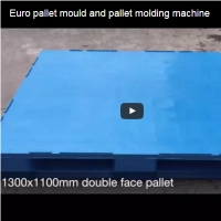 Euro pallet mould and pallet molding machine